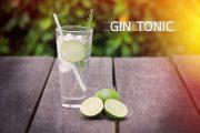 3 TOP Online Shops für Gin