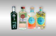 Meine Gin Sammlung (Januar 2020)