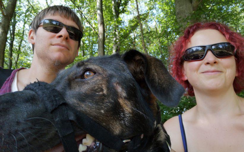 Ein halbes Jahr mit Hund