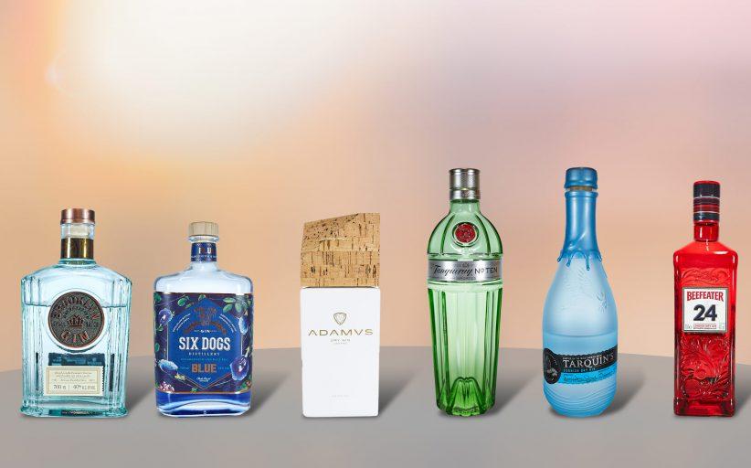 Meine Gin Sammlung (April 2020)