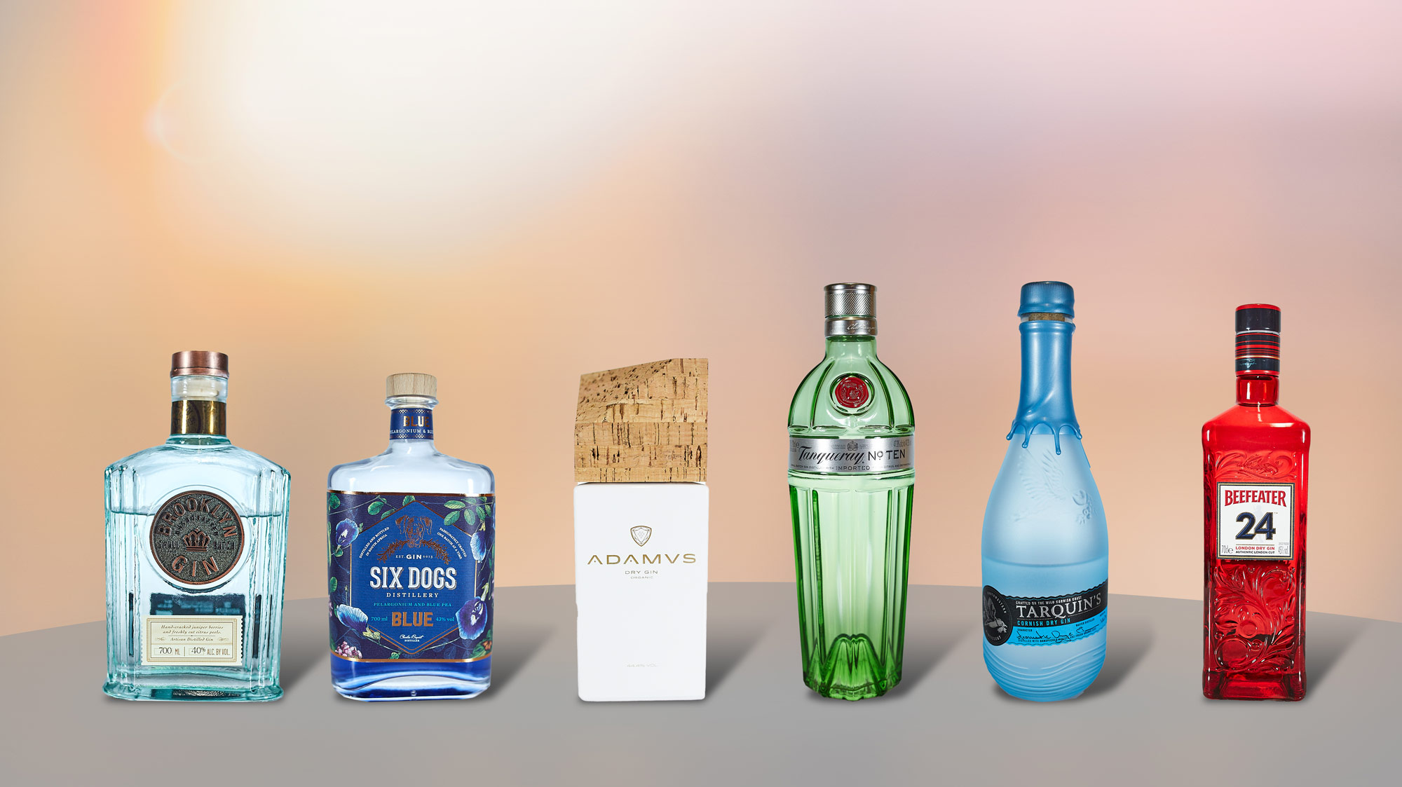 Meine Gin Sammlung (August 2020)