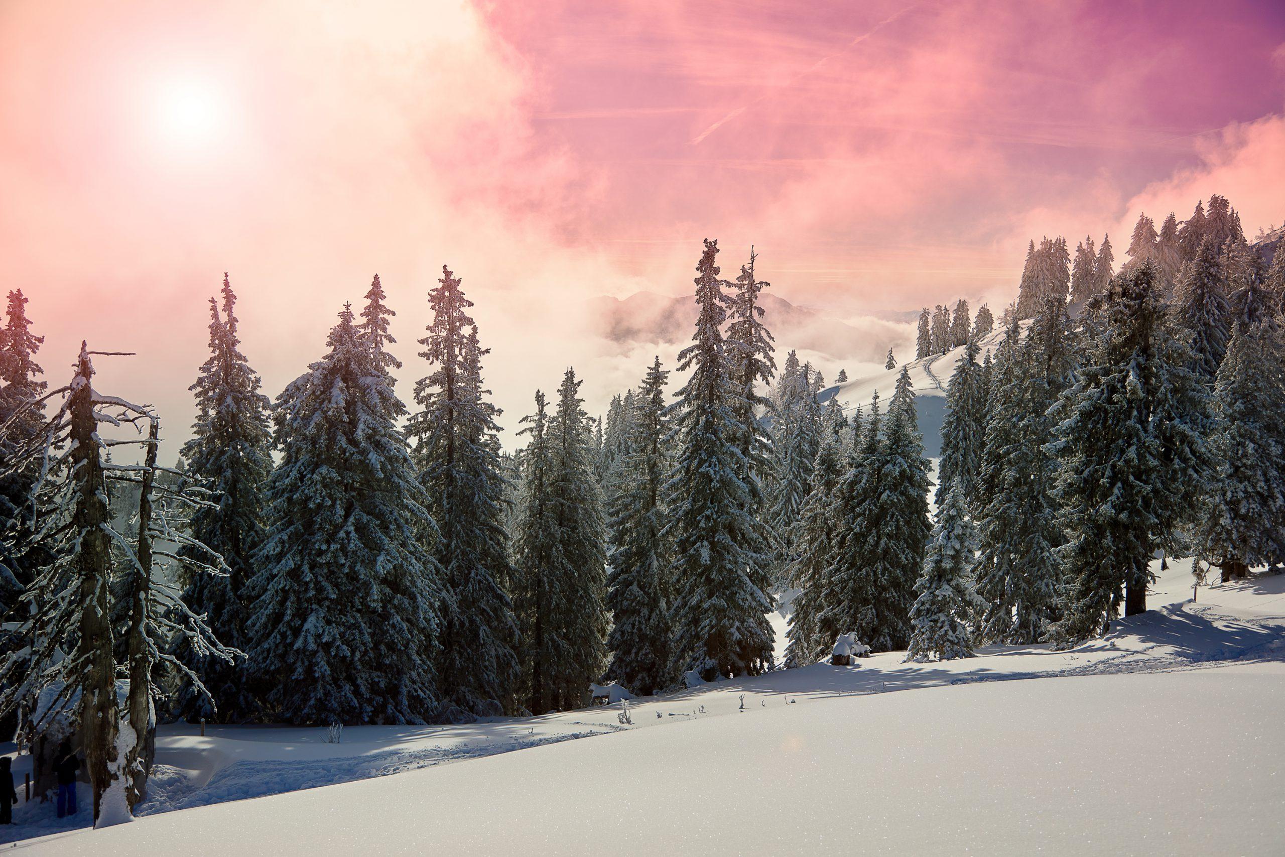 Magic_Winter2
