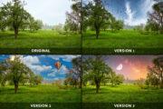1 Bild - 4 Versionen: Mystique Fields
